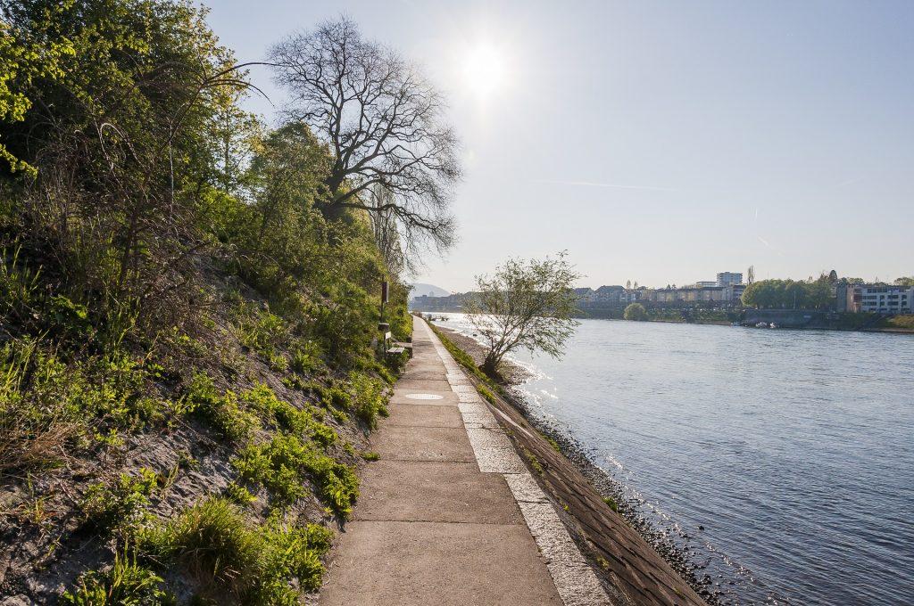 Frühling am Rheinufer bei Basel
